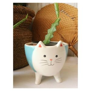 Mini Cat Shape Glass Planter with feet